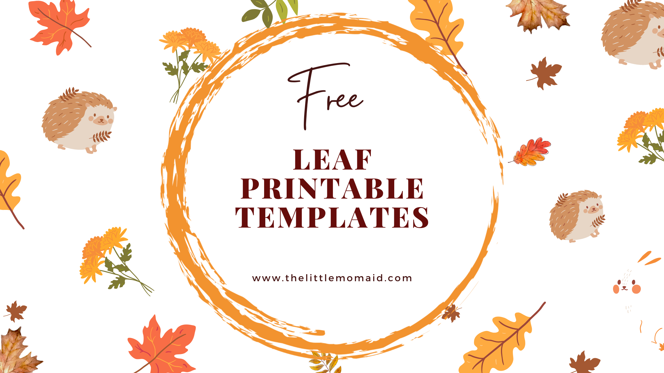 Free printable leaf templates for creating crafts, banners, coloring pages and for painting. These leaf patterns and leaf stencils are perfect for your fall crafts.